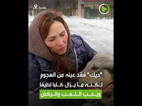 شاهد فتاة تنقذ كلبا شارف على الموت